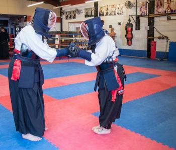 Kendo/Kenjutsu/Iaido